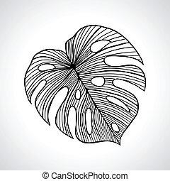 isolated., makro, liść, dłoń, czarnoskóry