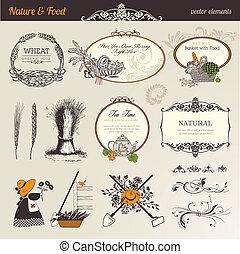 jadło, natura, elementy, wektor, &