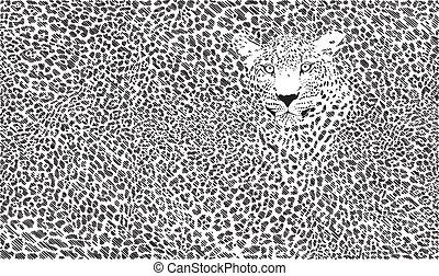 jaguar, tło, skóra