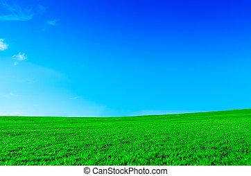 jasny, zielony krajobraz