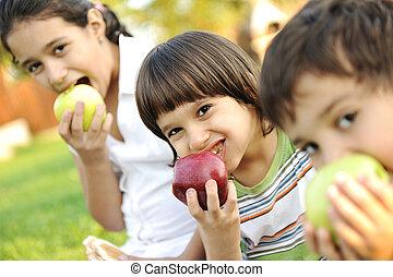 jedzenie, dof, shalow, jabłka, razem, mała grupa, dzieci