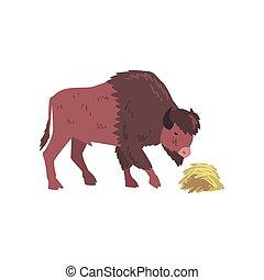 jedzenie, ilustracja, wektor, bizon, zwierzę, bawół, bok, siano, prospekt