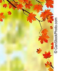 jesień, brzeg, liście, text., twój