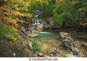 jesień, flow., strumyczek
