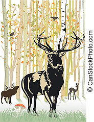 jesień, jeleń, las