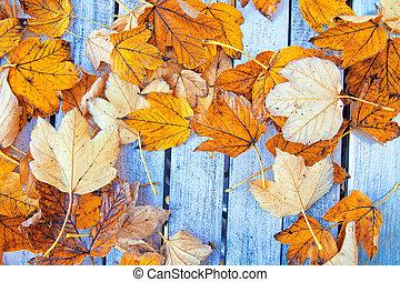 jesień, tło.