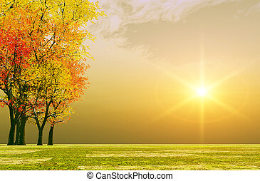 jesień, zachód słońca