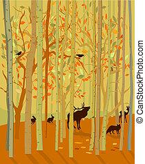 jesień, zwierzęta, las