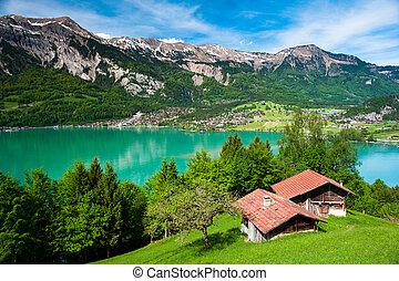 jezioro, panorama, brienz