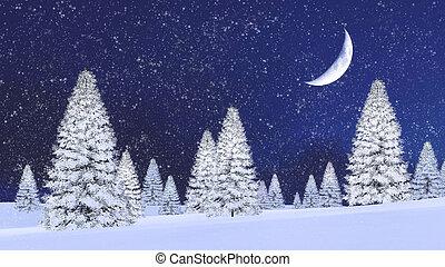 jodły, noc, opad śnieżny, śnieżny, pół gapią się