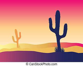 kaktus, zachód słońca, pustynia