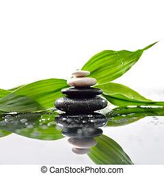 kamienie, piramida, liście, zen, powierzchnia, zielony, na, waterdrops