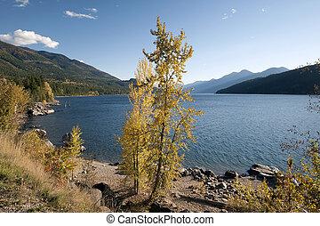 kanada, columbia, jezioro, brytyjski, kootenay, góry, purcell