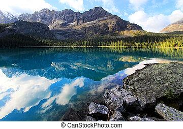 kanada, columbia, yoho, krajowy, jezioro, brytyjski, park, o'hara