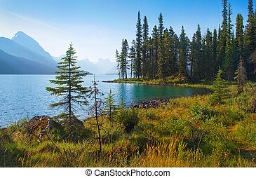 kanada, lato, krajobraz, alberta