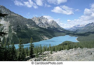 kanada, np, jezioro, jaspis, peyto, alberta
