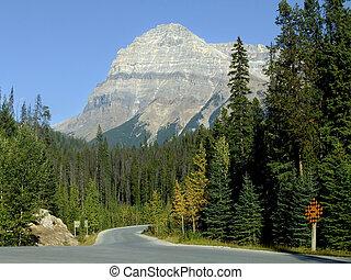kanada, yoho, sceniczny, krajowy, szmaragd, park, jezioro, przewodniczy, droga