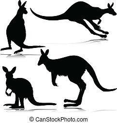kangur, wektor, sylwetka