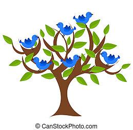 kaprys, drzewo