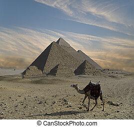 kaprys, piramidy