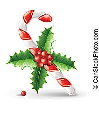 karmel, trzcina, słodki, liście, odizolowany, ilustracja, wektor, zielone tło, ostrokrzew, biały, jagody, boże narodzenie
