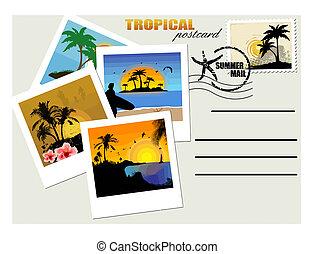kartka pocztowa, tropikalny