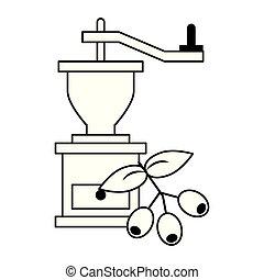 kawa rozcieracz, liście, fasola, czarnoskóry, biały