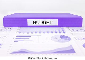 kierownictwo, finansowy, budżet, wykresy, wykresy, plan
