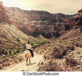 koń, kanion, wielki