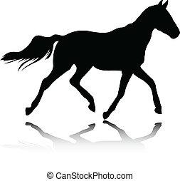 koń, wektor, -