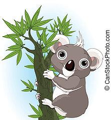 koala, sprytny, drzewo
