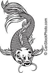 koi karp, fish
