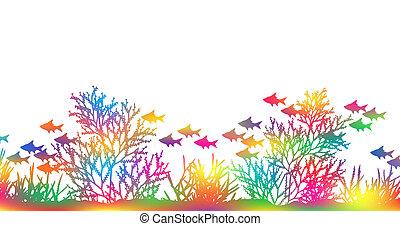 kolor, koral