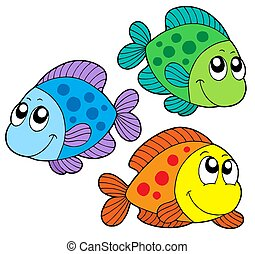 kolor, sprytny, ryby