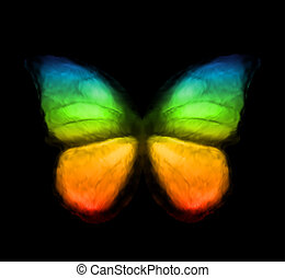 kolor, tęcza, wektor, butterfly.