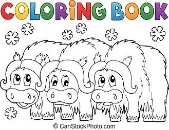 kolorowanie, muskoxen, książka, trzy