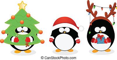 komplet, boże narodzenie, pingwin