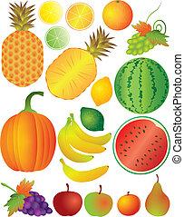 komplet, ilustracja, owoce