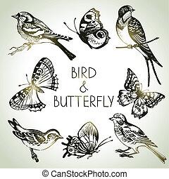 komplet, motyl, ptak, ilustracje, ręka, pociągnięty
