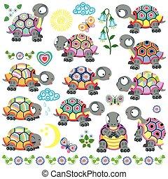 komplet, rysunek, żółw