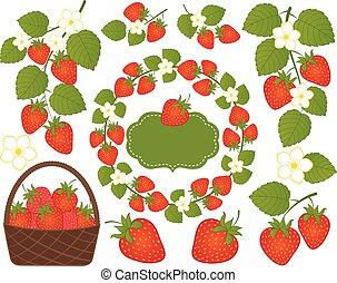 komplet, ułożyć, wieniec, kosz, wektor, strawberry., included, truskawki, kwiaty