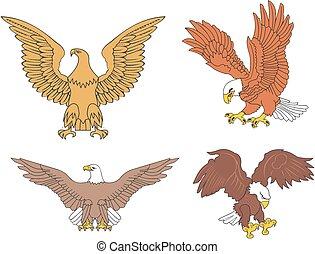 komplet, u.s., symboliczny, orły