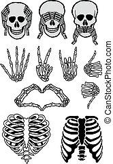 komplet, wektor, halloween, czaszka