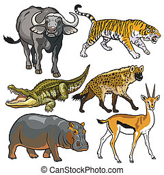 komplet, zwierzęta, afrykanin, dziki