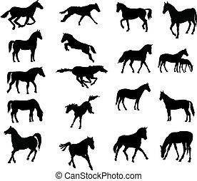 konie, vector-silhouettes, różny