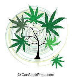 konopie, drzewo
