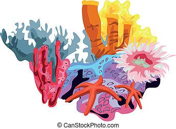 koralikowa rafa