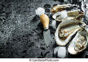 kostki, otworzony, lód, surowy, knife., ostrygi