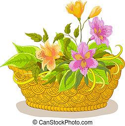 kosz, alstroemeria, kwiaty