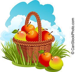kosz, jabłka